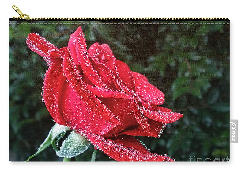 Photography Carry-all Pouch featuring the photograph Frosted by Kaye Menner