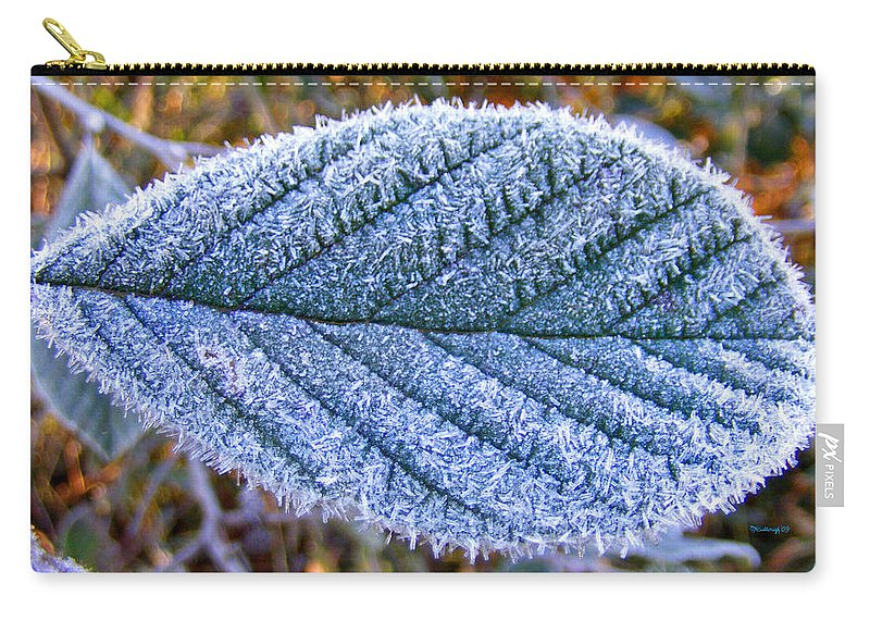 Plants Carry-all Pouch featuring the photograph Frosty Leaf by Duane McCullough