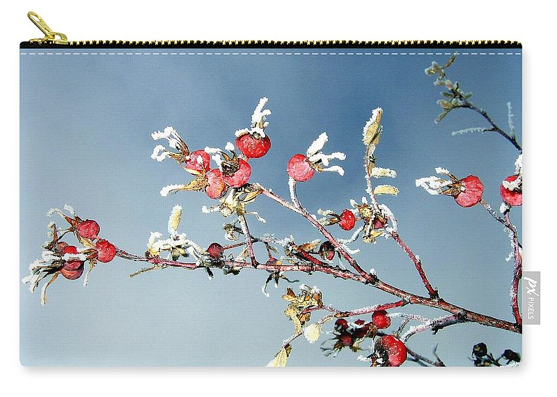 Frost Carry-all Pouch featuring the photograph Frosty Morn by Will Borden