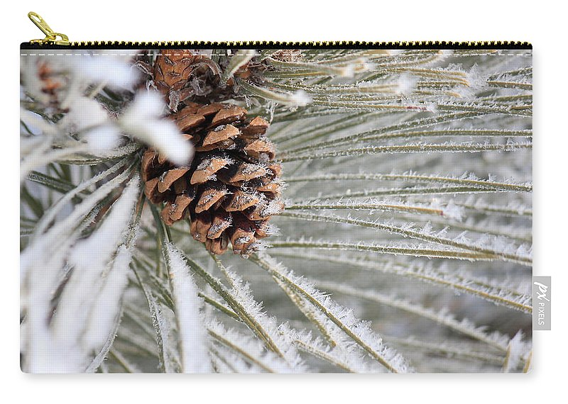 Pine Cone Carry-all Pouch featuring the photograph Frosty Norway Pine by Penny Meyers