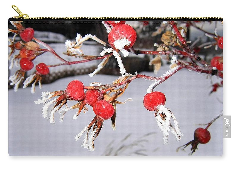 Frost Carry-all Pouch featuring the photograph Frosty Rosehips by Will Borden