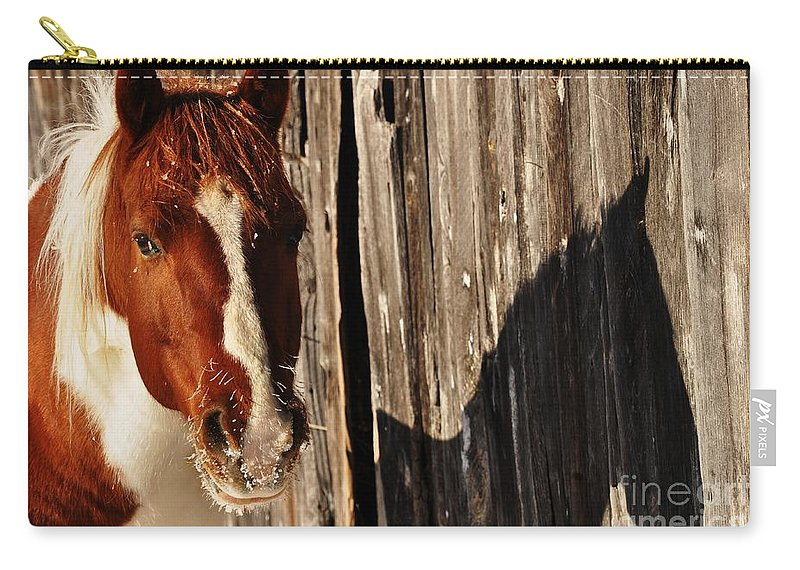 Horses Carry-all Pouch featuring the photograph Frosty Shadow by Cheryl Baxter
