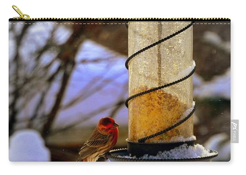 Bird Carry-all Pouch featuring the photograph Frozen Feeder And Disappointment by Zafer Gurel