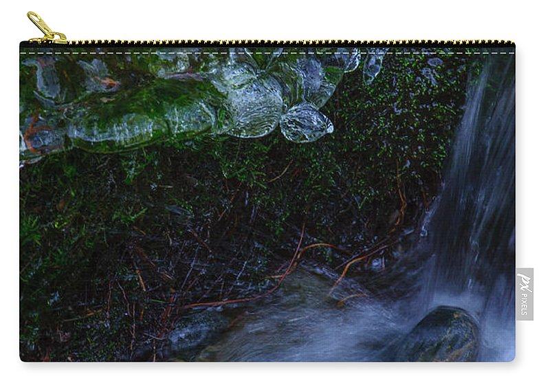 Frozen Garden Carry-all Pouch featuring the photograph Frozen Garden Stream by Roxy Hurtubise