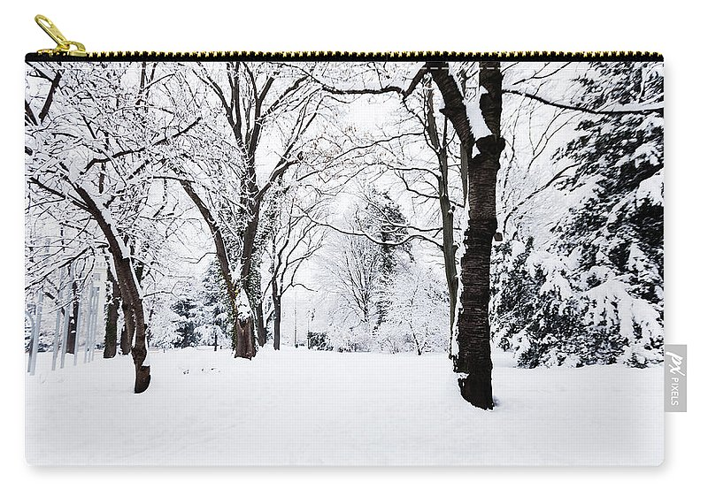 Snow Carry-all Pouch featuring the photograph Frozen Tree On A Snow Field by Lightkey