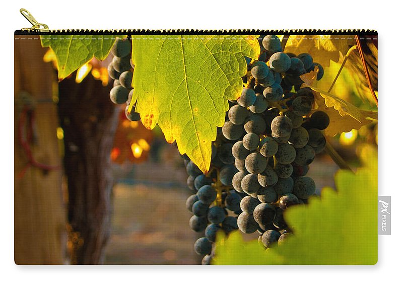 Grape Carry-all Pouch featuring the photograph Fruit Of The Vine by Bill Gallagher