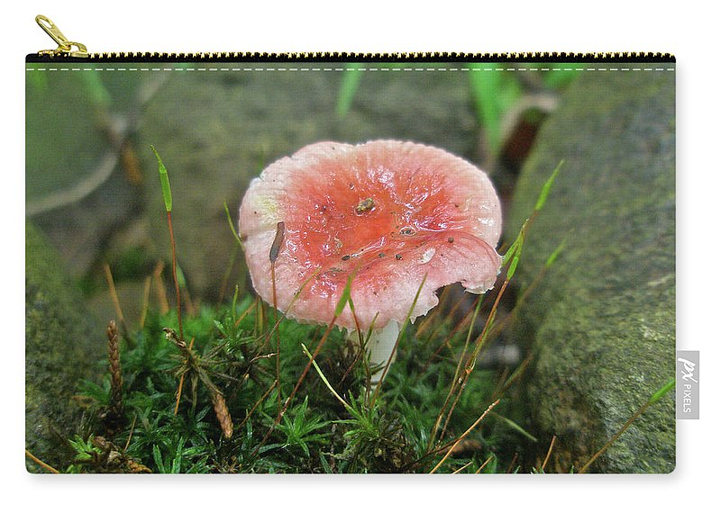 Moss Carry-all Pouch featuring the photograph Fruiting Moss And Pink Mushroom by Mother Nature