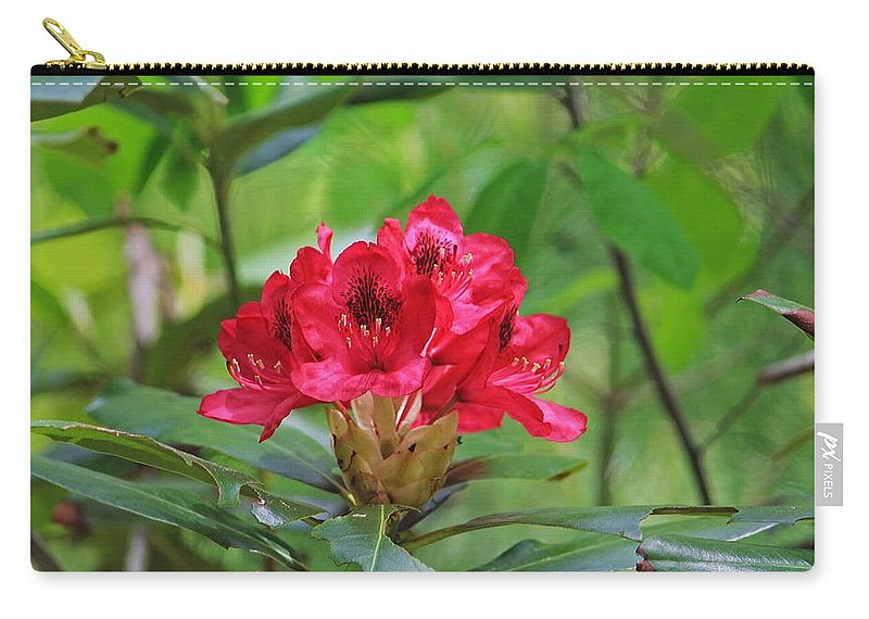 Moore State Park Carry-all Pouch featuring the photograph Fuchsia Rhododendron Moore State Park by Michael Saunders
