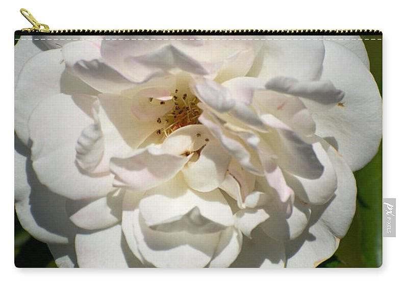 White Carry-all Pouch featuring the photograph Full Bloom by Michael Moriarty