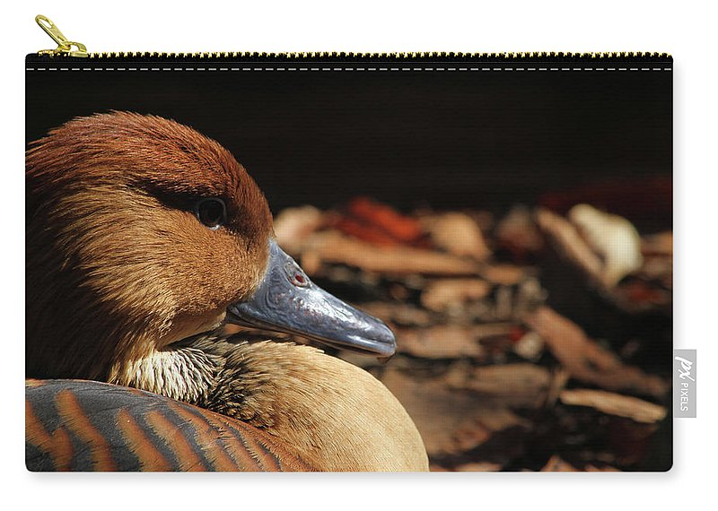 Duck Carry-all Pouch featuring the photograph Fulvous Whistling Duck by Karol Livote