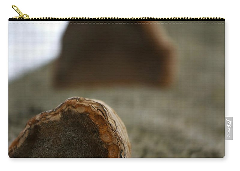 Fungus Carry-all Pouch featuring the photograph Fungus 12 by Allan Lovell