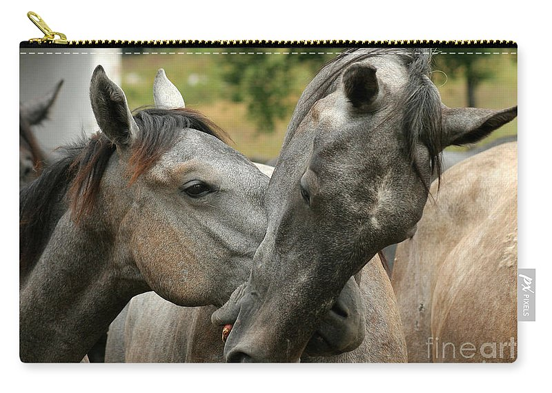 Horse Carry-all Pouch featuring the photograph Funny Horses by Angel Ciesniarska