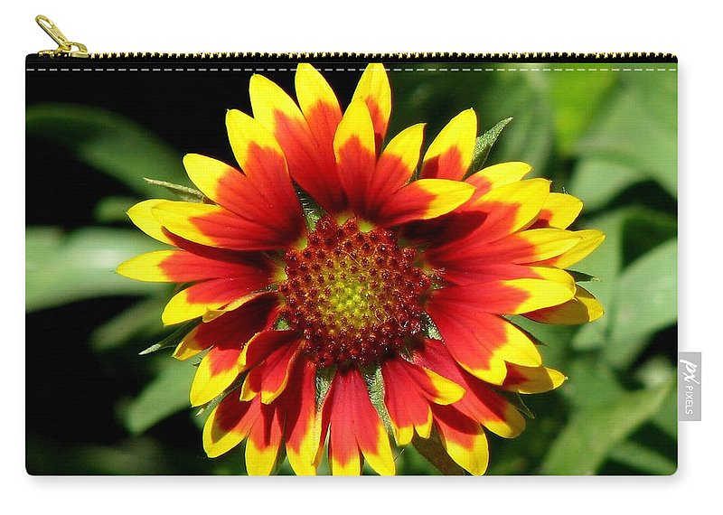 Green Carry-all Pouch featuring the photograph Gaillardia by Taiche Acrylic Art