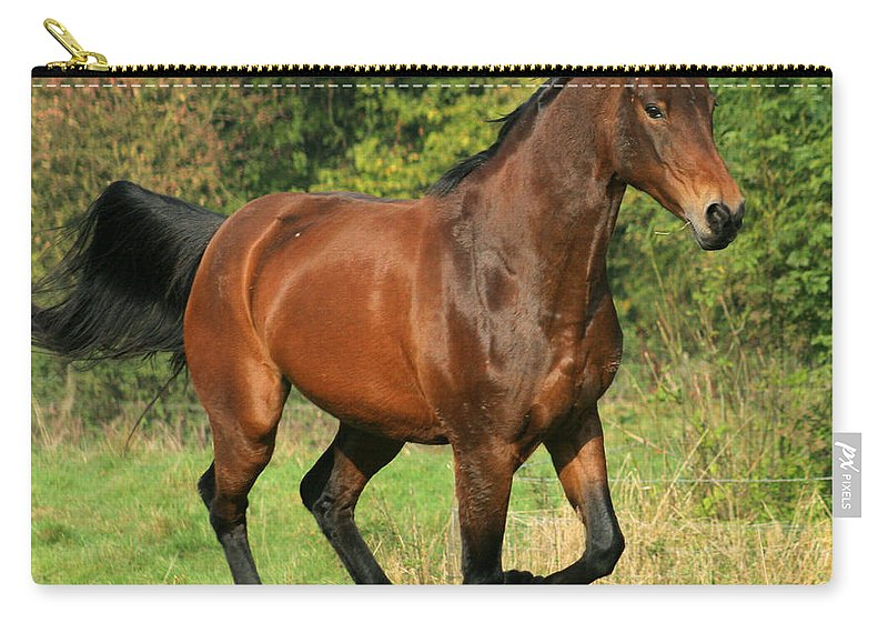 Horse Carry-all Pouch featuring the photograph Gallop by Angel Ciesniarska