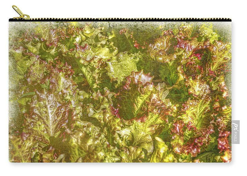 Garden Carry-all Pouch featuring the photograph Garden Lettuce - Green Gold by Mother Nature