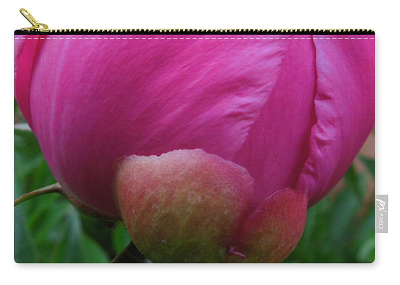 Colette Carry-all Pouch featuring the photograph Garden Peony June Joy by Colette V Hera Guggenheim