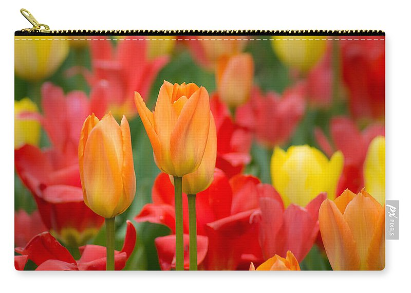 Red Carry-all Pouch featuring the photograph Garden Torches by Bill Pevlor