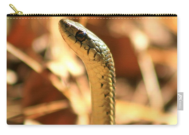 Snake Art Carry-all Pouch featuring the photograph Garter Stand by Neal Eslinger