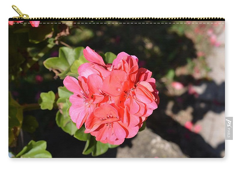 Geranium Carry-all Pouch featuring the photograph Geranium by Dany Lison