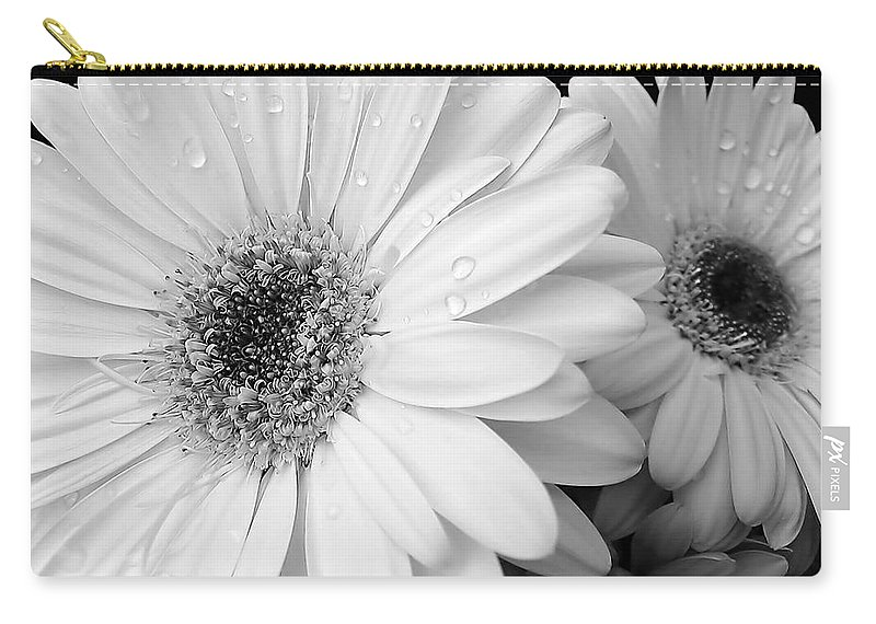 Daisy Carry-all Pouch featuring the photograph Gerber Daisies In Black And White by Jennie Marie Schell