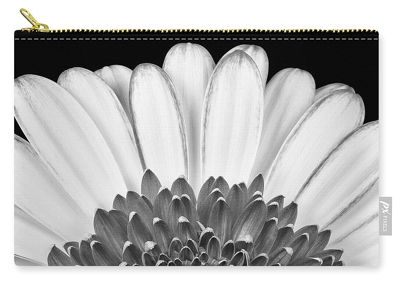 3scape Photos Carry-all Pouch featuring the photograph Gerbera Rising by Adam Romanowicz
