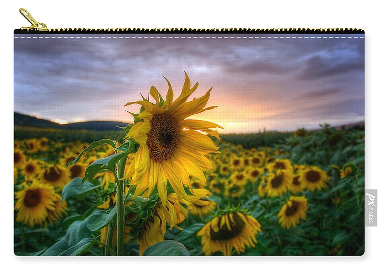 Sommer Carry-all Pouch featuring the pyrography Get Sun by Steffen Gierok