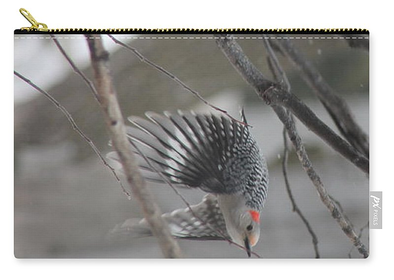 Red Bellied Woodpecker Carry-all Pouch featuring the photograph Getting Out Of Here by Wayne Williams