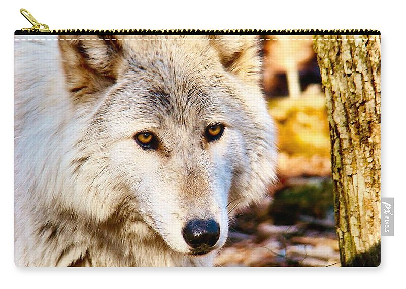 White Carry-all Pouch featuring the photograph Ghost Wolf by Art Dingo