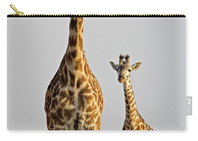 Scenics Carry-all Pouch featuring the photograph Giraffe With Calf by Wldavies