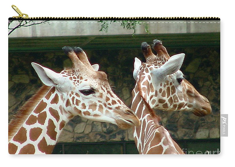 Giraffe Carry-all Pouch featuring the photograph Giraffes-09023 by Gary Gingrich Galleries