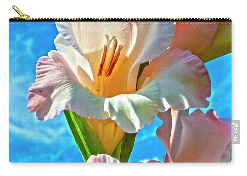 Gladiolus Carry-all Pouch featuring the photograph Gladiolus by Heiko Koehrer-Wagner