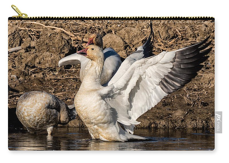 Nature Carry-all Pouch featuring the photograph Glorious Snow Goose by Kathleen Bishop