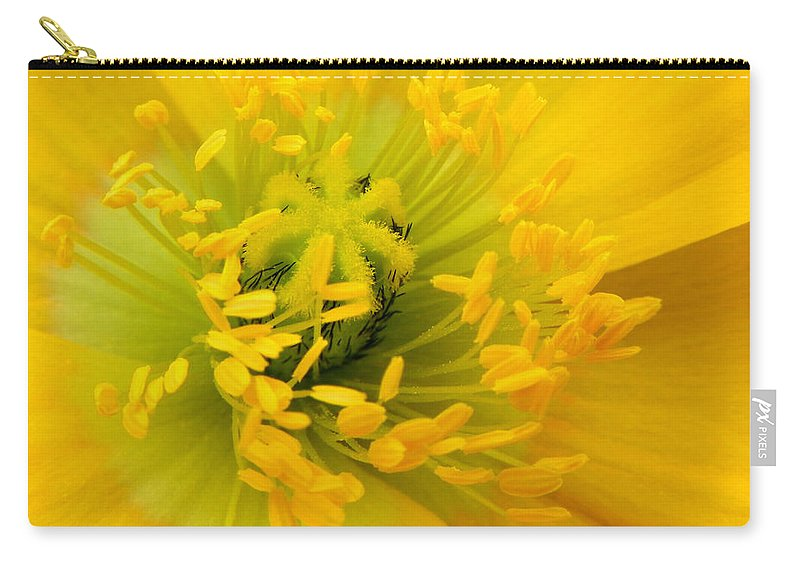 Flower Carry-all Pouch featuring the photograph Glory Of Nature by Deb Halloran