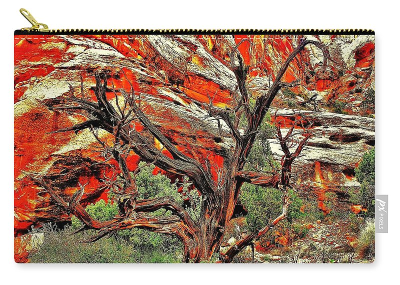 Desert Carry-all Pouch featuring the photograph Gnarly by Benjamin Yeager