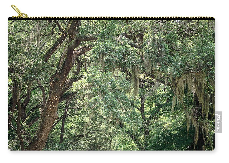 Spanish Moss Carry-all Pouch featuring the photograph God's Canopy by Sennie Pierson