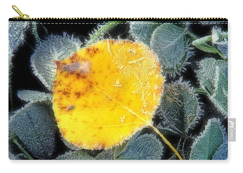 First Frost Carry-all Pouch featuring the photograph Gold On Green by Bill Morgenstern