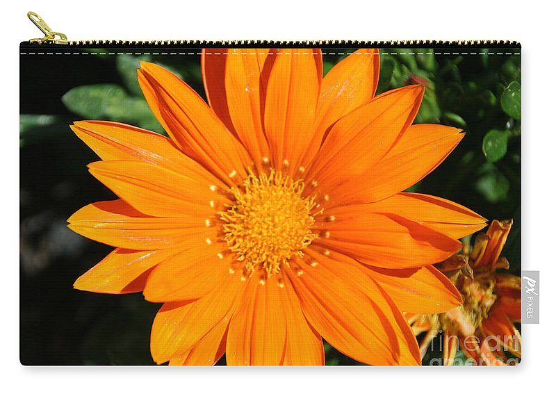 Flower Carry-all Pouch featuring the photograph Gold Ring by Susan Herber