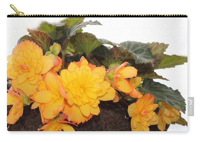 Begonia Carry-all Pouch featuring the photograph Golden Beauty by Sylvia Thornton