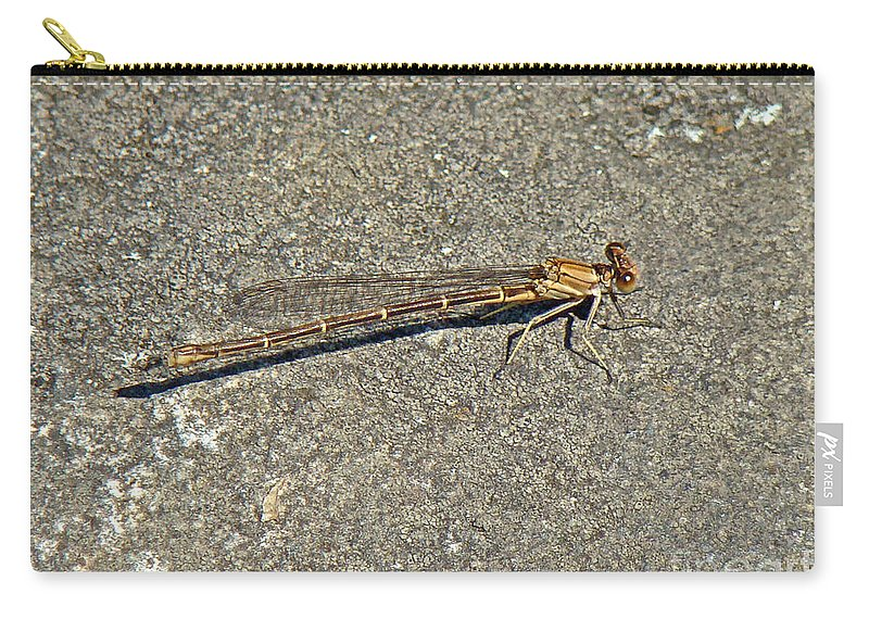 Golden Carry-all Pouch featuring the photograph Golden Damselfly - Odonata - Suborder Zygoptera by Mother Nature