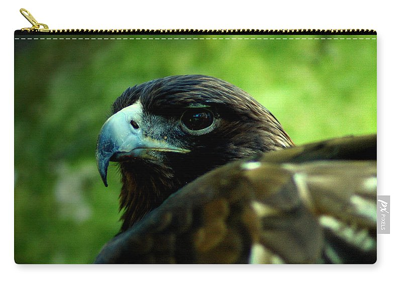 Bird Carry-all Pouch featuring the photograph Golden Eagle by David Weeks