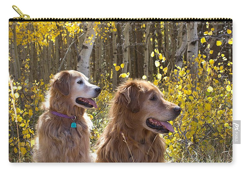 Golden Retrievers Carry-all Pouch featuring the photograph Golden Goldens - Golden Retriever Brothers - Casper Mountain - Casper Wyoming by Diane Mintle