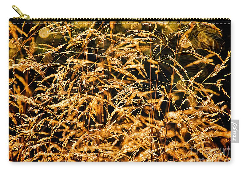 Lyme Regis Carry-all Pouch featuring the photograph Golden Grasses by Susie Peek