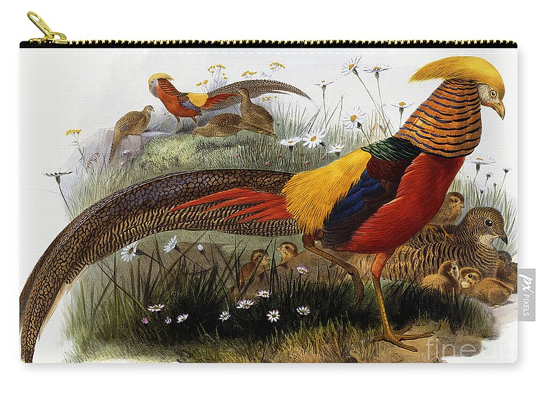 Golden Pheasants Carry-all Pouch featuring the painting Golden Pheasants by Joseph Wolf