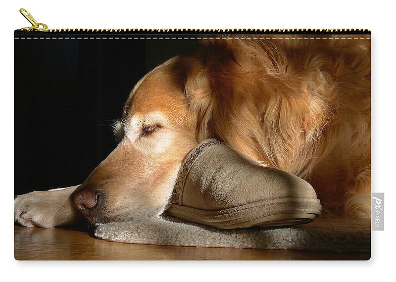 Golden Retriever Carry-all Pouch featuring the photograph Golden Retriever Dog With Master's Slipper by Jennie Marie Schell