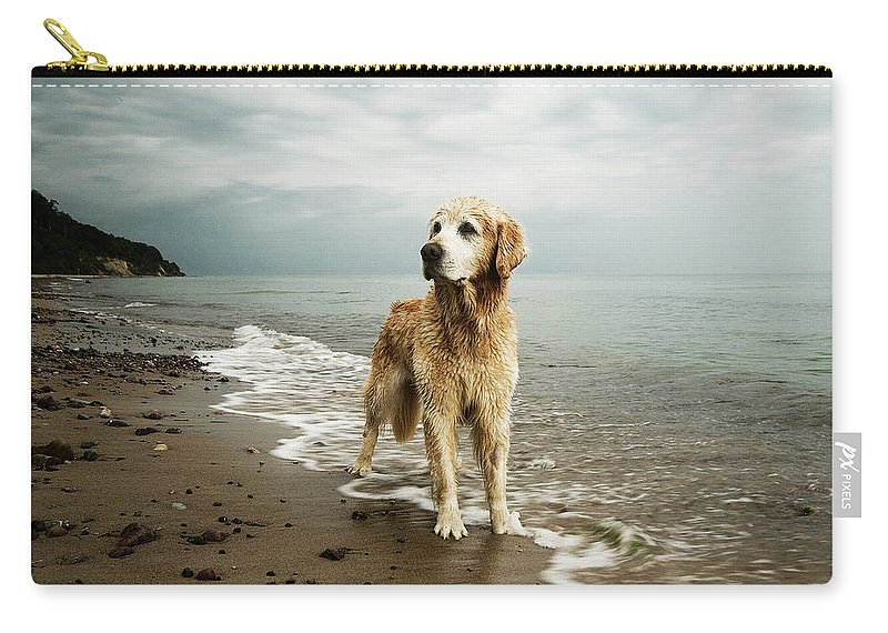 Pets Carry-all Pouch featuring the photograph Golden Retriever On Beach by Jutta Bauer