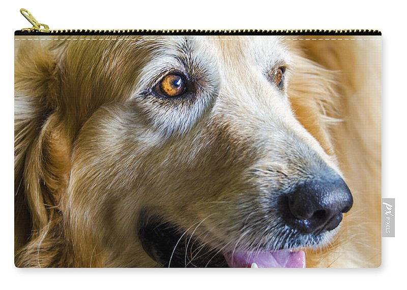 Golden Retriever Carry-all Pouch featuring the photograph Golden Retriever Smile by Carolyn Marshall