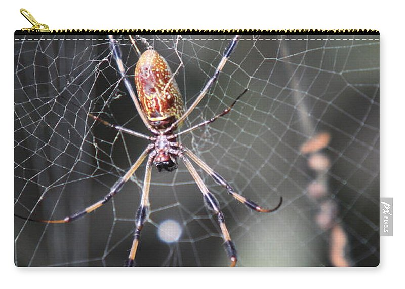 Golden Silk Spider Carry-all Pouch featuring the photograph Golden Silk Spider by Christiane Schulze Art And Photography