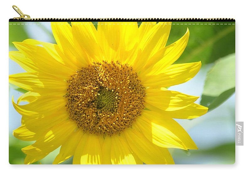 Golden Sunflower- 2013 Carry-all Pouch featuring the photograph Golden Sunflower - 2013 by Maria Urso