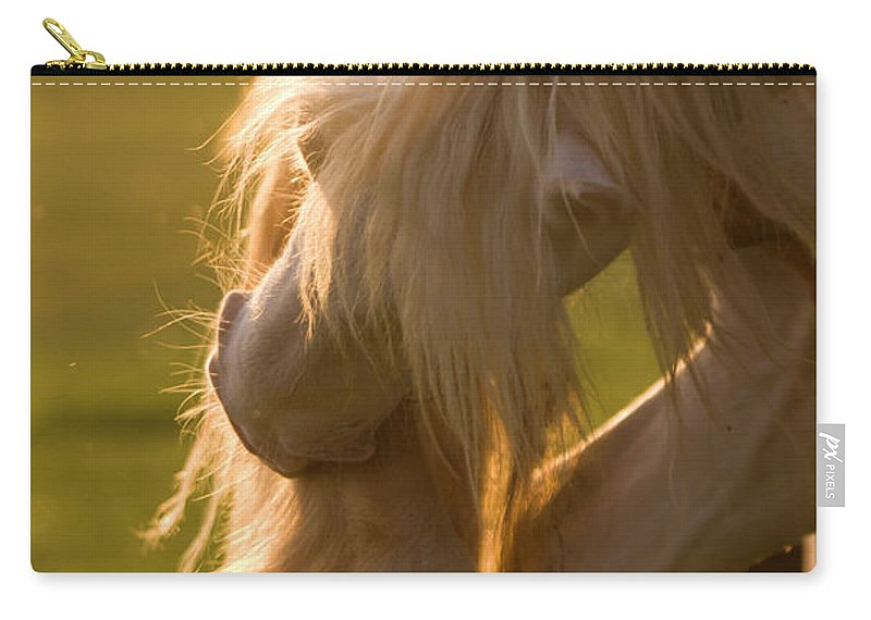 Horse Carry-all Pouch featuring the photograph Golden Sunlight In The Mane by Angel Ciesniarska