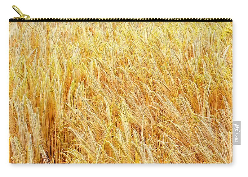 Sunset Carry-all Pouch featuring the photograph Golden Sunset by Neil Finnemore